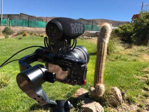Journey Glimpse Vlogging Setup Chile